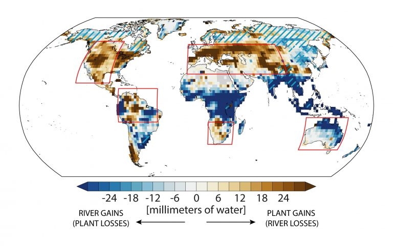 Climate change and impact on plants and water supply