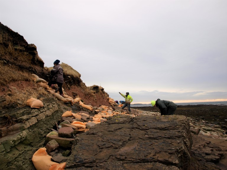 Violent storms unearth 1,500 years old Viking burial site
