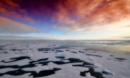"New study predicts Arctic ""sea ice"" will disappear by 2050"